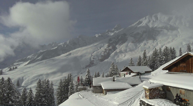 Ski and Snowboard Elm