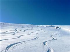 Snowboard and Ski cari (c) Nic Oatridge
